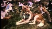 Woburn Festival, 1960's - Film 17360