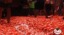 Tomatina.es Video promocional Travel to La Tomatina de Buñol