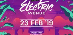 Electric Avenue Festival 2018 - Hagley Park, Christchurch