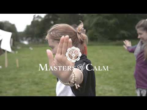 Masters of Calm IE